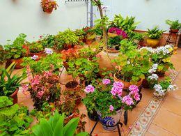 Foto del patio de pequeña extensión ganador