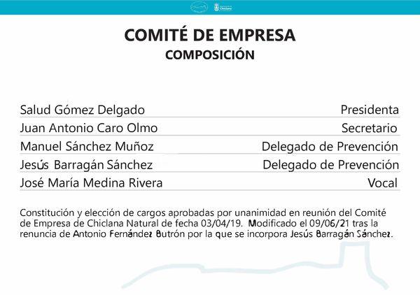 Composición del Comité de Empresa