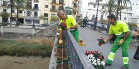 Siembra de flores en Puente Chico