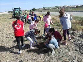 Escolares durante la plantación de árboles en una de las actividades