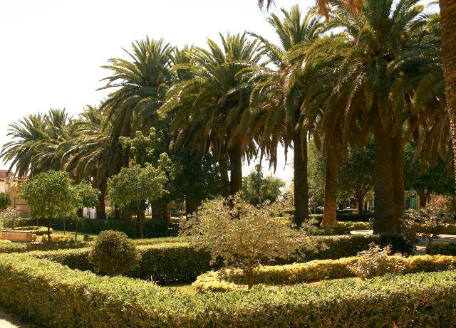 Parque Público Huerta del Rosario
