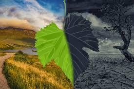 9. El cambio climático