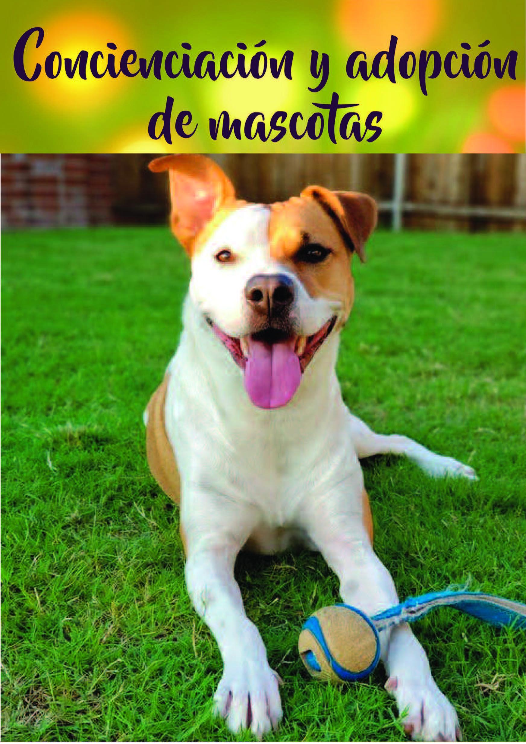 6. Adopción de mascotas